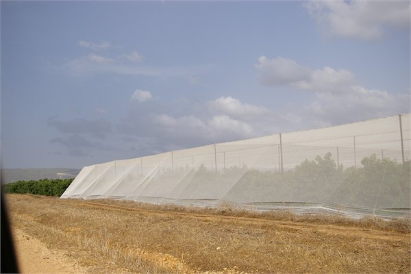 Seawater Greenhouse Low-cost shade net structure